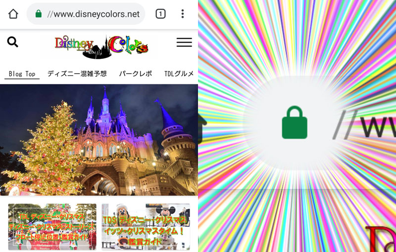 Disney Colors SSL化