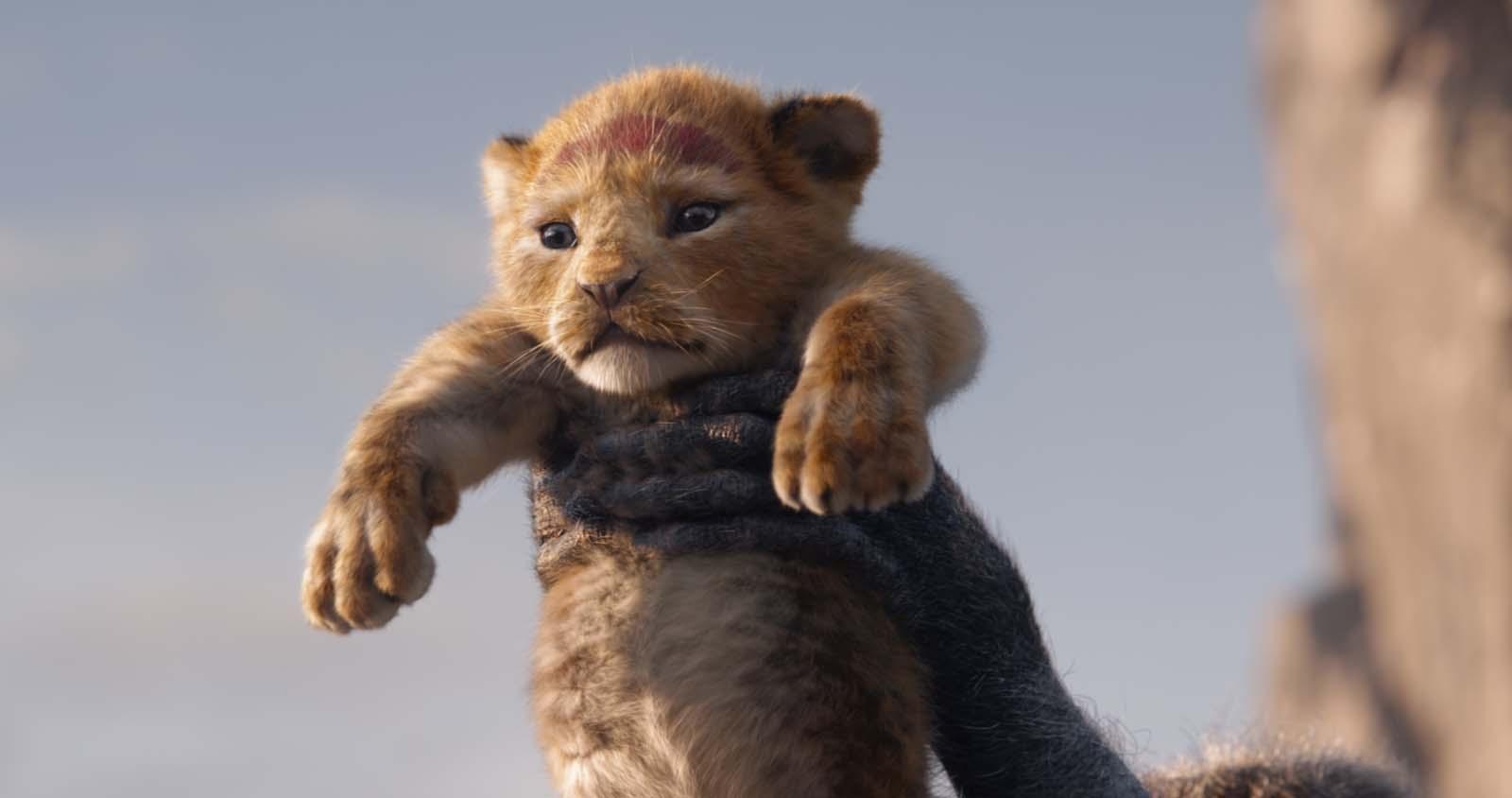 超実写版『ライオン・キング』シンバ 誕生