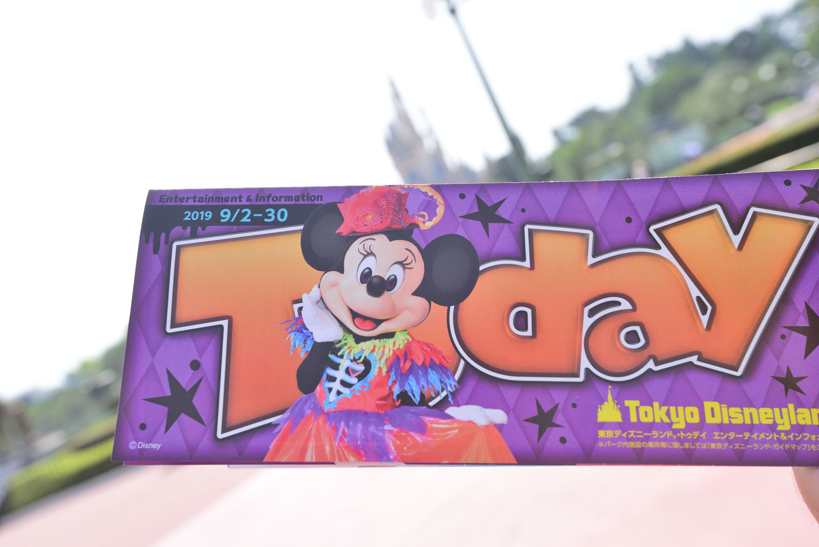 東京ディズニーランド Today 2019年9月2日~9月30日 ディズニー・ハロウィーン2019 ミニー